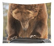 Mouthwatering Tapestry