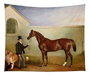Mr Meakin Holding Sir Robert Peels Chestnut Hunter With His Dogs Hector And Jem Tapestry