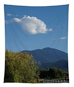Mt Ashland In Late Summer Tapestry