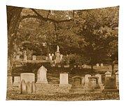 Mt Auburn Cemetery 13 Sepia Tapestry