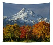 1m5117-mt. Hood In Autumn Tapestry