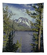 1m9226-mt. Moran And Jenny Lake, Wy Tapestry