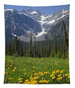 1m3613-mt. Patterson And The Snowbird Glacier Tapestry