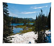 Mt. Rainier Wilderness Tapestry