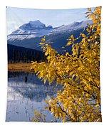 1m3626-mt. Saskatchewan In Fall Tapestry