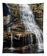 Muddy Creek Falls At Low Water At Swallow Falls State Park In Western Maryland Tapestry