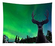 Mule Deer And Aurora Borealis Over Taiga Forest Tapestry