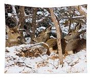 Mule Deer In Snow Tapestry