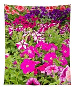 Multi-colored Blooming Petunias Background Tapestry