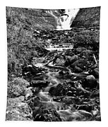 Munising Fall B And W Wash Tapestry