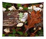 Mushrooms And Leaf Tapestry