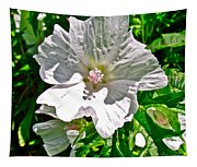 Musk Mallow Along Trail To Cap Gaspe In Forillon National Park-quebec  Tapestry
