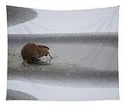Muskrat Meal On Ice Tapestry