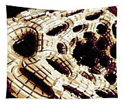 My Alien Planet Tapestry