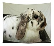 My Friend Bunny Tapestry