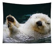 Napping On The Water Tapestry