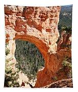 Natural Bridge  Bryce Canyon Tapestry