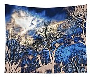 Natural Highlights Tapestry