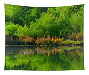 Naturally Reflected Tapestry