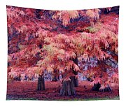 Nature Colors Tapestry