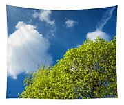 Nature In Spring - Bright Green Tree And Blue Sky Tapestry