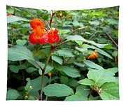 Nature's Jewel Tapestry