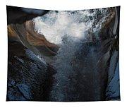 Natures Super Slide Tapestry