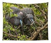Nest Building Tapestry