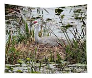 Nesting Sandhill Crane Tapestry