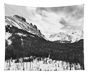 Never Summer Wilderness Area Panorama Bw Tapestry