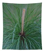 New Growth In Life Tapestry