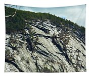 New Hampshire Ledge Tapestry