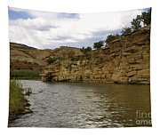 New Photographic Art Print For Sale Banks Of The Rio Grande New Mexico Tapestry