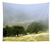 Mist In The Californian Valley Tapestry