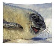 Newborn Gray Seal Pup Halichoerus Tapestry