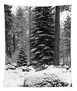 Next Season Christmas Trees Tapestry