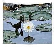 #night Blooming Water Lily Tapestry