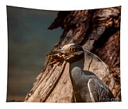 Night Heron And Crawdaddy Tapestry