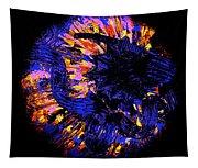 Night Pumpkin Iridescence Tapestry