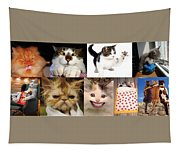 Nine Lives And Mood Swings Tapestry