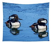 Male Hooded Merganser Pair Tapestry