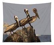 No More Room - Pelican - Gulf Of Mexici Tapestry