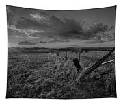 No Pass Black And White Tapestry