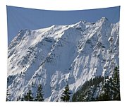 1m4443-north Face Of Big Four Mountain Tapestry