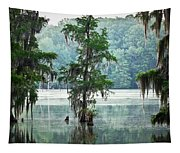 North Florida Cypress Swamp Tapestry
