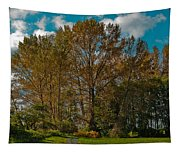 North Lions Park In Mount Vernon Washington Tapestry