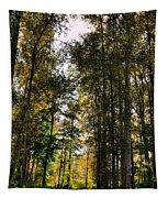 North Lions Park - Mount Vernon Washington Tapestry