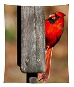 Northern Cardinal Tapestry