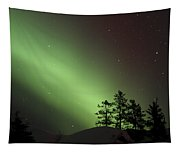 Northern Lights Disappear Tapestry