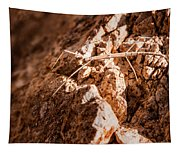 Northern Walking Stick Tapestry